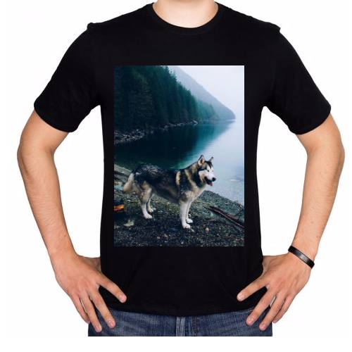 Fotografía del producto Wolf bad (2865)