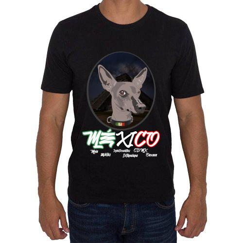 Fotografía del producto Xoloitzcuintle Mexicano (45623)